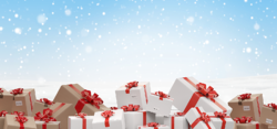 holiday carrier surcharges-1